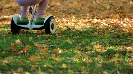gyro : Kids playing on grass with gyroscooter. Close up. Fallen leaves on the grass in the park. Stock Footage