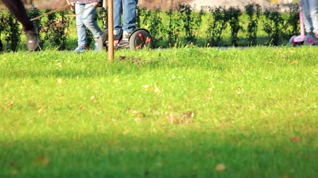 two wheeled : Kids riding gyroscooters in the autumn park. Green grass surface.