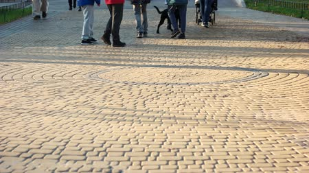 cobbles : Crowd of people are walking in the park. Cubblestone pavement surface. Stock Footage