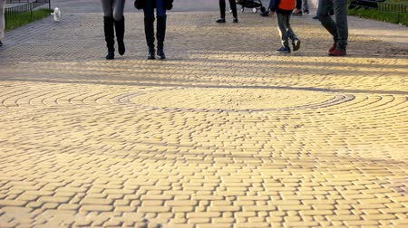 cobbles : Crowded park, cobbled pedestrian surface. Walking strolling people legs.
