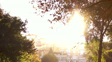 seçkinler : Bright sunshine above town buildings. Green trees in the park. Stok Video