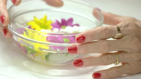 zmarszczki : Aroma bath and female manicured hands. Glass bowl with water and colorful chrysanthemum, elderly woman well-groomed hands with red manicure. Hands spa therapy.