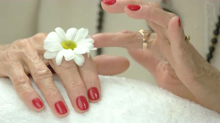 chryzantema : Red manicure and white little chrysanthemum. Senior woman manicured hands in spa salon with chrysanthemum flower close up. Wideo