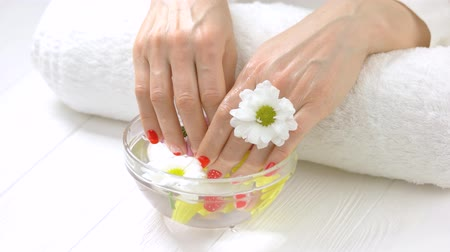 chrysanthemum : Manicured hands with chrysanthemum, glass bowl. Beautiful woman hands ig getting spa treatment in spa salon. Skin care and beauty.