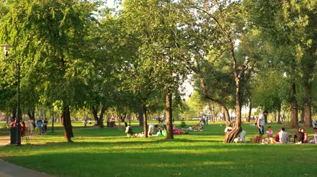 sáně : Ukraine, Kiev 17.09.2017. People resting in the park on weekend. Green summer lawn. Dostupné videozáznamy
