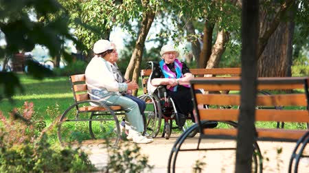 nursing : Ukraine, Kiev 17.09.2017. Grannies in the park. Retired old ladies in the city park.