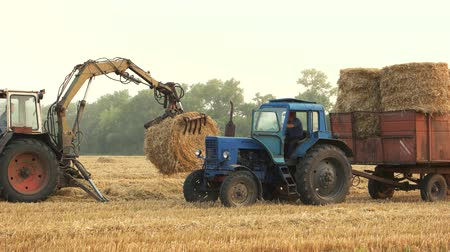 szénaboglya : Tractor working on the field. Tractor lifting up and folding hays. Stock mozgókép