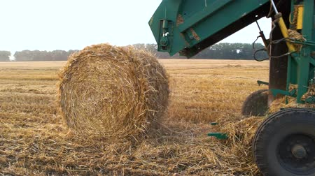 balya : Tractor making hay bales. combine Harvester swathing a crop.