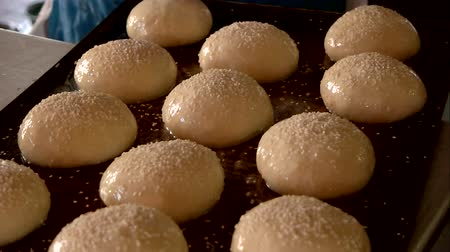 кунжут : Female baker is spreading sesame on dough. Dough ready for oven. Homemade pastry concept. Стоковые видеозаписи