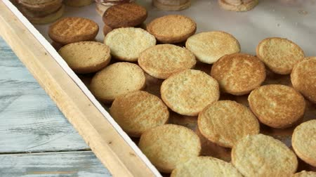baked pudding : A lot of round cookies at bakery. Fresh crispy cookies. Manufacture of pastry. Stock Footage