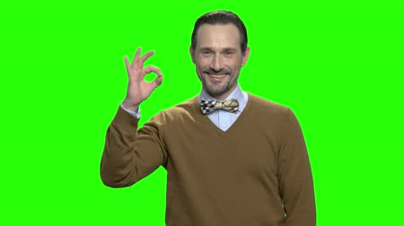 hromakey : Portrait of happy smiling man shows ok sign. Okay gesture. Nice man in brown sweater and bow tie. Green screen hromakey background for keying. Stock Footage