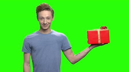 deha : Portrait of young boy with red gift box with ribbon. Green screen hromakey background for keying.
