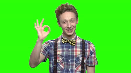 idéia genial : Portrait of teen caucasian boy with ok sign. Green screen hromakey background for keying. Vídeos