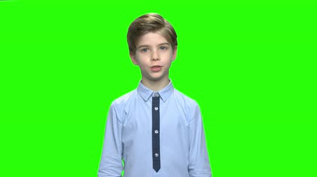 articulação : Smart little boy speaking to audience. Green hromakey background for keying. Vídeos