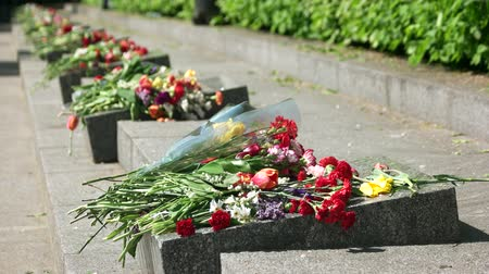 могильная плита : Headstone memorials with flowers bouquets. Granite stones outdoor. Стоковые видеозаписи