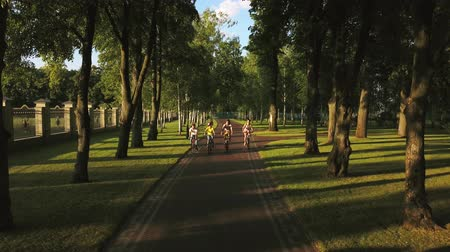 прокат : Company of sporty people cycling in park. Group of cheerful students riding bicycles in summer park, drone view. Friendship and healthy lifestyle. Стоковые видеозаписи