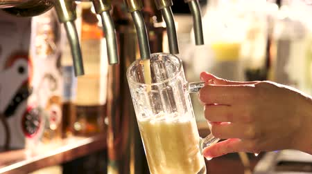 frothy : Bartender pouring glass of draft beer. Download close-up of barman hand at beer tap pouring a draught beer.
