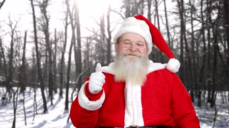 santaclaus : Senior Santa Claus showing two thumbs up. Smiling Santa Claus with thumb up gesture outdoors. Christmas, holidays and people concept.