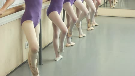 gimnastyka : Group of ballerinas having practice at studio. Pretty ballet-dancers practicing legs position at barre. Wideo