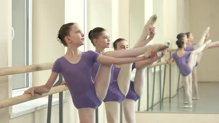 classical suit : Young ballerinas training their flexibility. Group of cute kids doing gymnastic exercise at barre in ballet studio. Development of muscles flexibility.