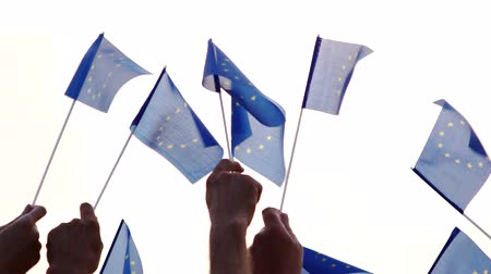 crowd together : Group of people holding flags of European Union. Group of patriotic people with EU flags, back view. People and patriotism concept. Stock Footage
