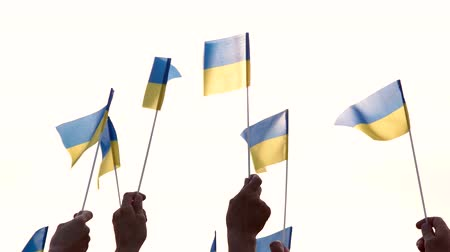 crowd together : People holding Ukrainian flags, rear view. Ukrainian patriots with raised flags outdoors. Glory to Ukraine. Stock Footage