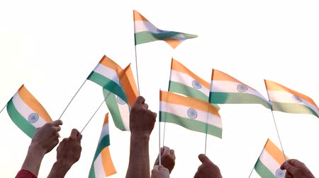 прапорщик : People holding Indian flags. People raised National flags of India. Rally for Human rights. Стоковые видеозаписи