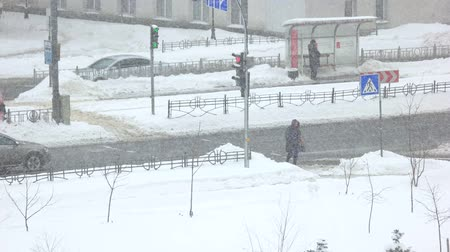 Mature woman crossing the street in a winter. People and city traffic. City life in winter.