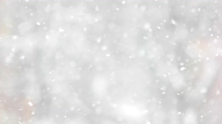 Snowfall on the background of blurred forest. Slow motion snow falling down against blurred background. Winter holidays season.