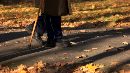 Old man walking with stick in autumn park. Aged man wallking alone with cane on path in autumn park. Beautiful sunny day. Wideo