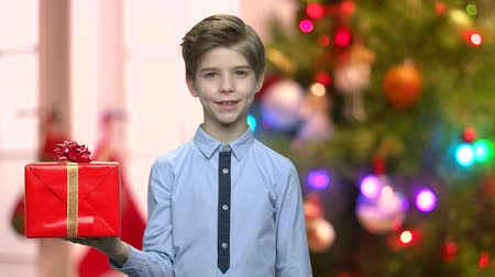 Cute child with gift box on Christmas background. Handsome boy holding gift box for Christmas. Abstract glitter defocused background.
