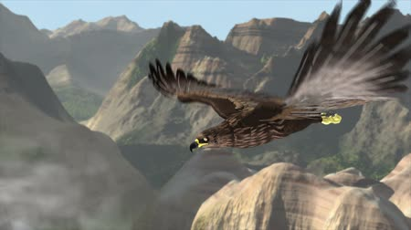 хищник : Flying eagle with Mountains and sky Стоковые видеозаписи