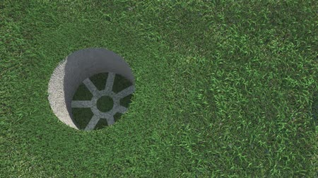 delikleri : Golf ball on the grass and winding leafs Stok Video