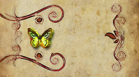 flower : animated decorative painting background border with flying butterfly and growing flowers frame