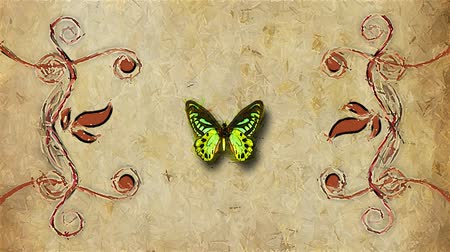 título : animated decorative painting background border with flying butterfly