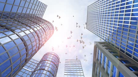 bina : animated growing transforming buildings with flying birds and airplane Stok Video