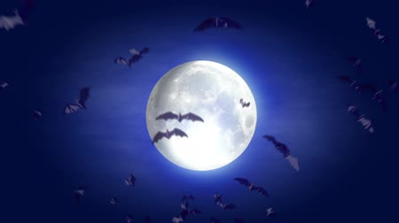 nietoperz : animated cartoon Halloween background with bat and moon