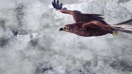 bald mountain : Flying eagle with Mountains and sky animation background Stock Footage