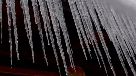 rampouch : Icicles hanging from roof begin to melt with the coming of spring. Close up. Dostupné videozáznamy