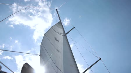 регата : Sails of the sailing yacht in the wind. White sky background