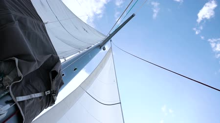 regaty : Sails of the sailing yacht in the wind. White sky background