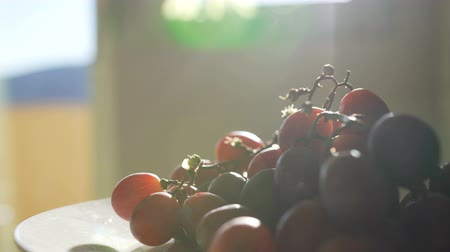 szőlőművelés : Bunch of grapes in the sunlight