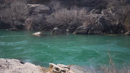 effluent : Mountain river with emerald colored water.
