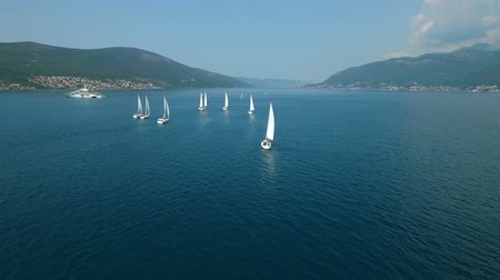 レガッタ : Aerial view of a sailing yacht regatta in the Adriatic sea 動画素材