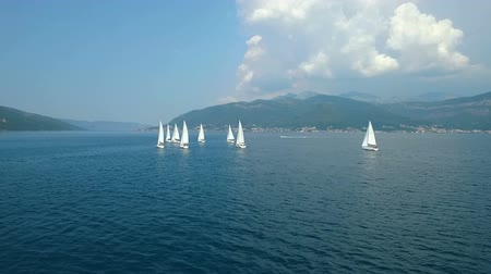 yat yarışı : Aerial view of a sailing yacht regatta in the Adriatic sea Stok Video