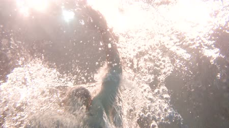 submerge : Underwater slow motion bottom footage of young athletic man swimming in the pool Stock Footage