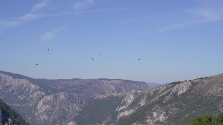 dáma : Birds flying high. Panoramic view of valley mountain peak on the background Dostupné videozáznamy