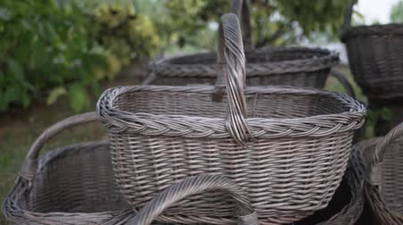 Empty wicker harvest baskets stacked under the tree