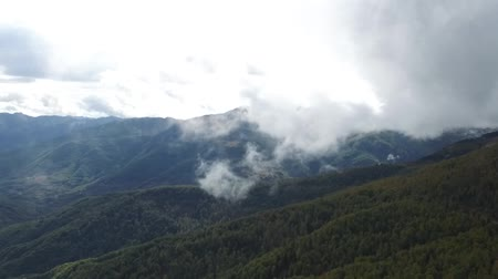 Epic aerial flight over the forest high in the mountains through the clouds. Стоковые видеозаписи