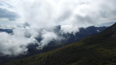 épico : Epic aerial flight over the forest high in the mountains through the clouds. Vídeos
